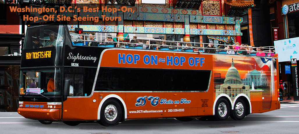 Hop On, Hop Off Tours